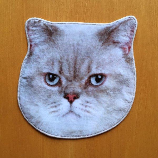 画像1: リアルモチーフタオル 猫 (1)