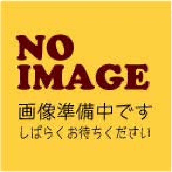 画像1: ★特急制作料金★(お問い合わせ済みのお客様用) (1)